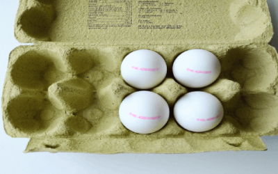Een ei hoort erbij – Waarom zijn eieren gezond?